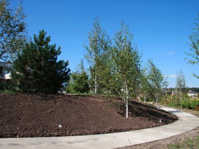 Ogród-Prywatny-w-Kijowie---Budowa