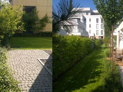 Ogród 02 Al. Wilanowska.