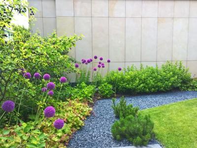 Ogród prywatny w Warszawie Al. Wilanowska